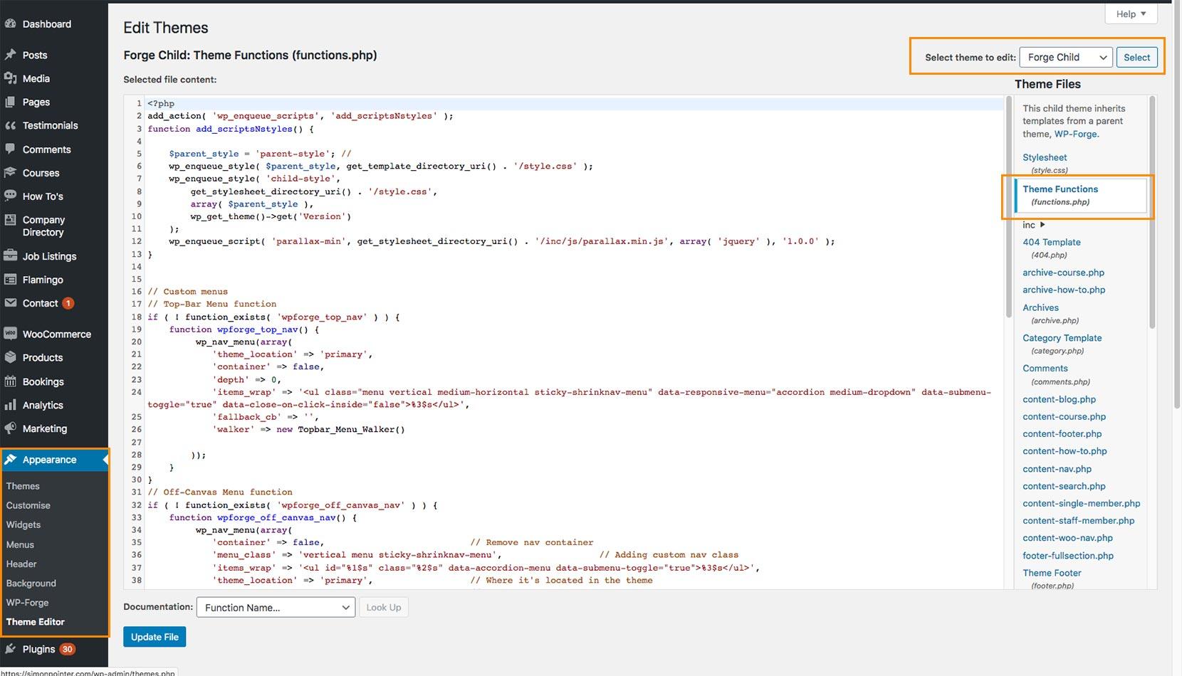 Screen shot showing edit WordPress theme functions via admin